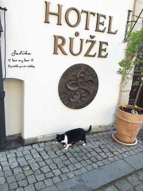 Hotel Ruze薔薇飯店Krumlov庫倫諾夫 (2)