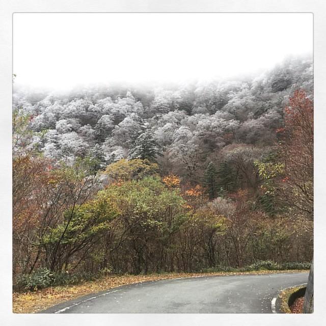 Photo:「霧氷」 景色が開けた午後。 #石鎚山 #ドライブ  #ufoライン By kaidouminato