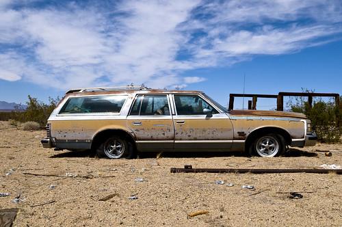safari car photo