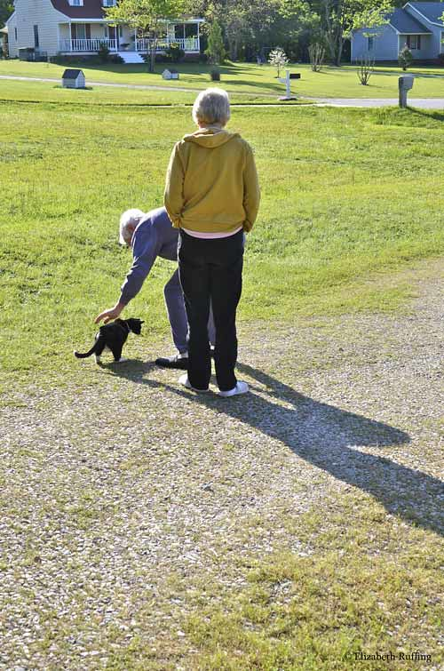 Mom and Dad walking with Maxie outside