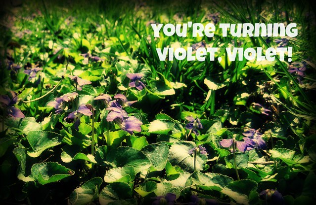 you're turning violet