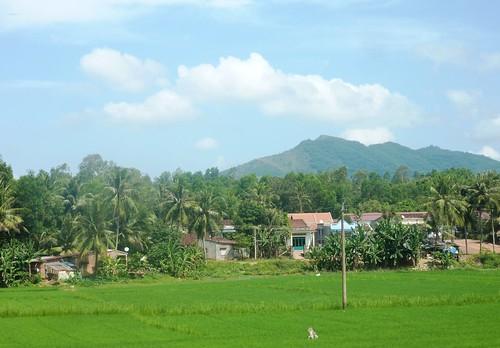 V-Route Quy Nhon-Da Nang (26)