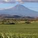 Popocatépetl with sugarcane fields - Volcán Popocatépetl con campos de caña de azucar; Puebla, Mexico por Lon&Queta