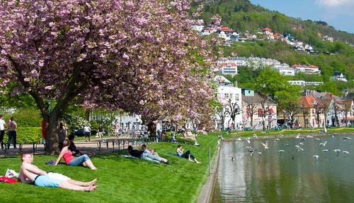 Bergen 25