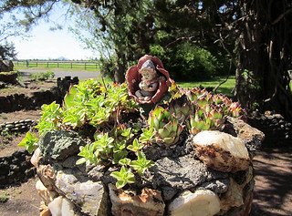 petersen-rock-garden-june-2012 (13)