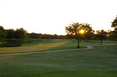 Rancho Park Golf Course, Rancho Park Course