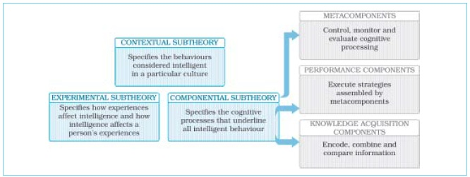 NCERT Class XII Psychology: Chapter 1 – Variations in