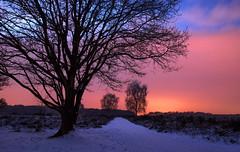 2013 01 17 Westerheide at Night