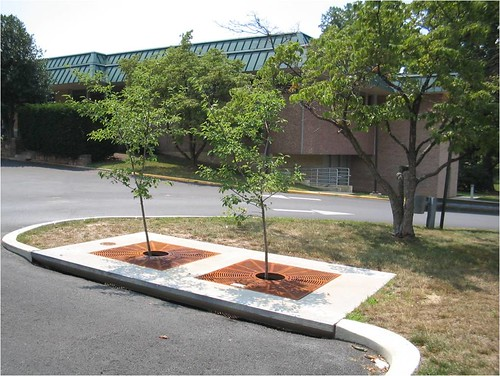 Stormwater Infrastructure | Department of Environmental