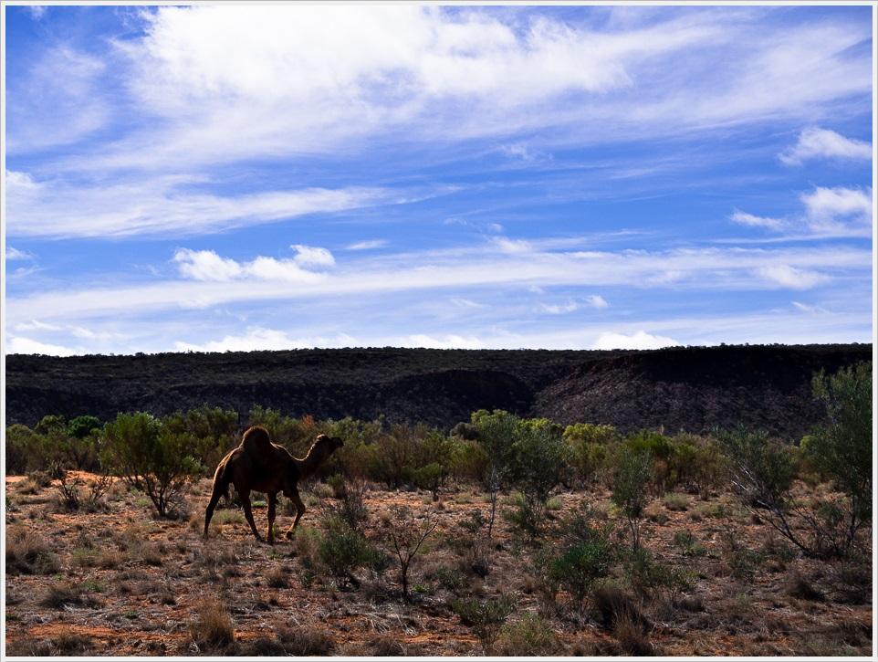 2013 05 25_z2strony_Uluru_P5220208