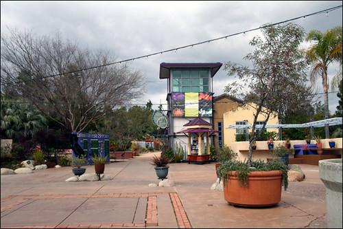 Water Conservation Garden
