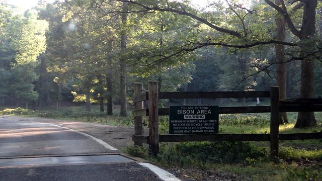 DSC06636 240813 Lone Elk Park