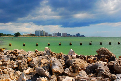 ocean beach birds rocks florida horizon diamond poles isle clearwater gumm gumm238