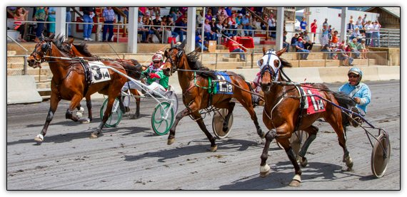 First Harness Racing Wine Festival in the Shenandoah Valley