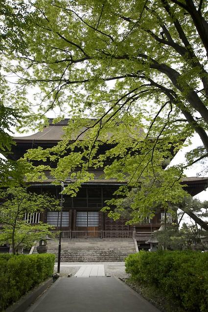 善光寺 Zenkoji Temple