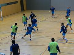 futebol de salã£o, sports, team sport, ball game,