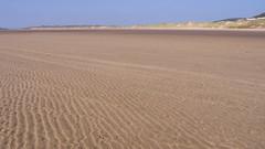 steppe(0.0), field(0.0), soil(0.0), plateau(0.0), grassland(0.0), erg(1.0), sand(1.0), plain(1.0), aeolian landform(1.0), natural environment(1.0), dune(1.0), landscape(1.0), wadi(1.0),