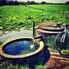 Angeberwissen! Artesischer Brunnen in Gartrop