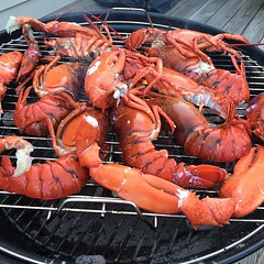 Hello lovelies :blush::fork_and_knife: #Maine #lobster
