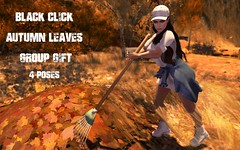 Black Click Group Gift - Autumn Leaves Prop with 4 poses