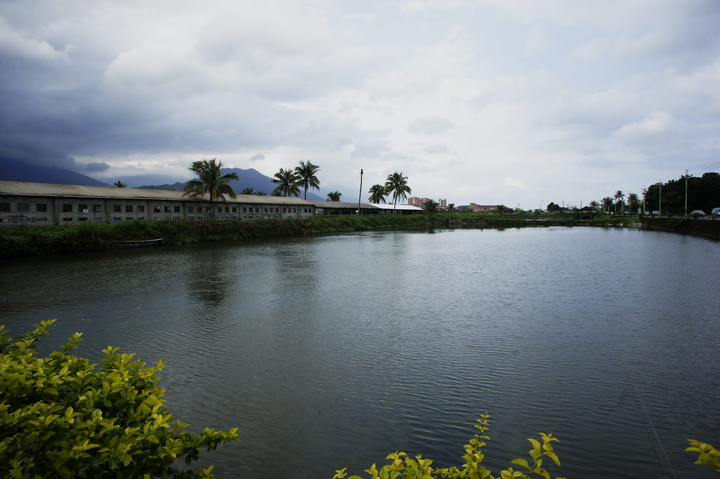 壽豐立川漁場 (1)