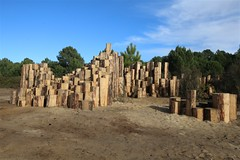 Forêt d'Art Contemporain