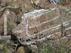 Troctolite-anorthosite layering