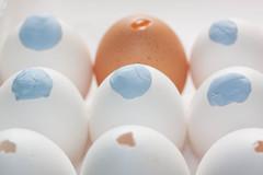 Egg Cupcake8