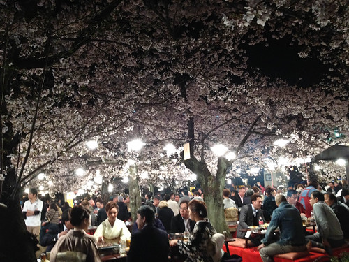 Dinner under the cherry trees
