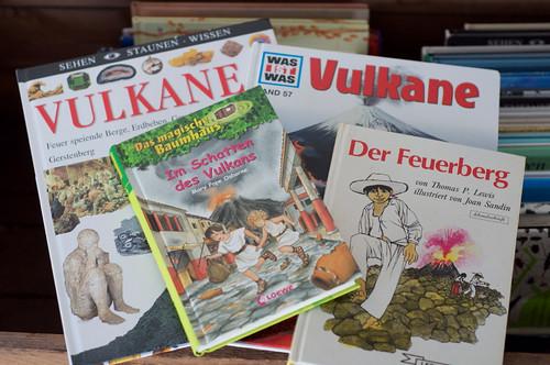 Bücher Vulkane