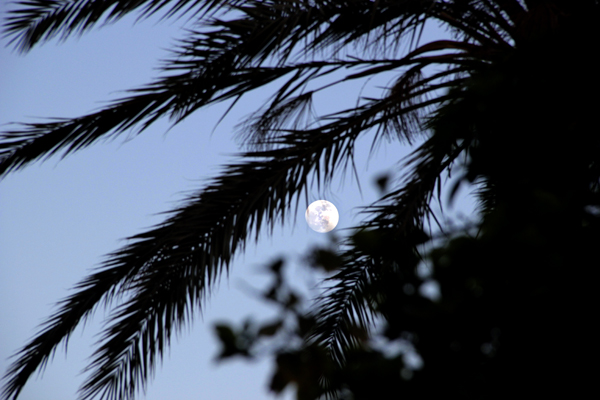 Luna sobre Sousse