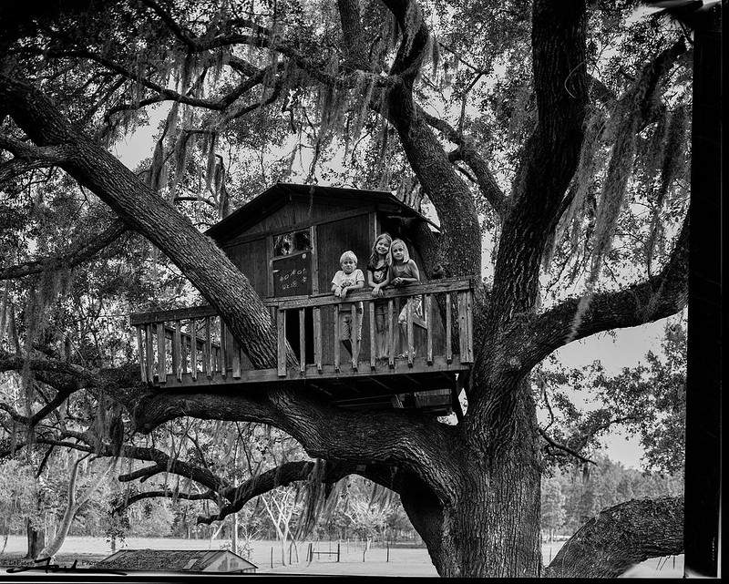 Z, D & M in M's tree house