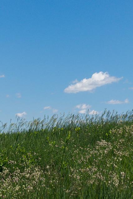 Thompson Prairie