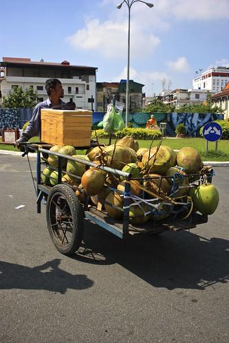 coconuts a plenty