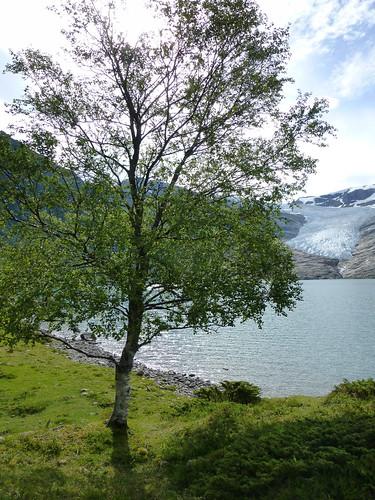 Norwegen Tag4g