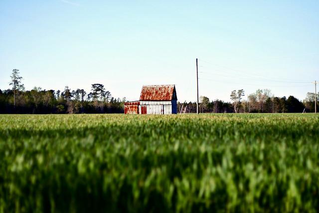 That barn...