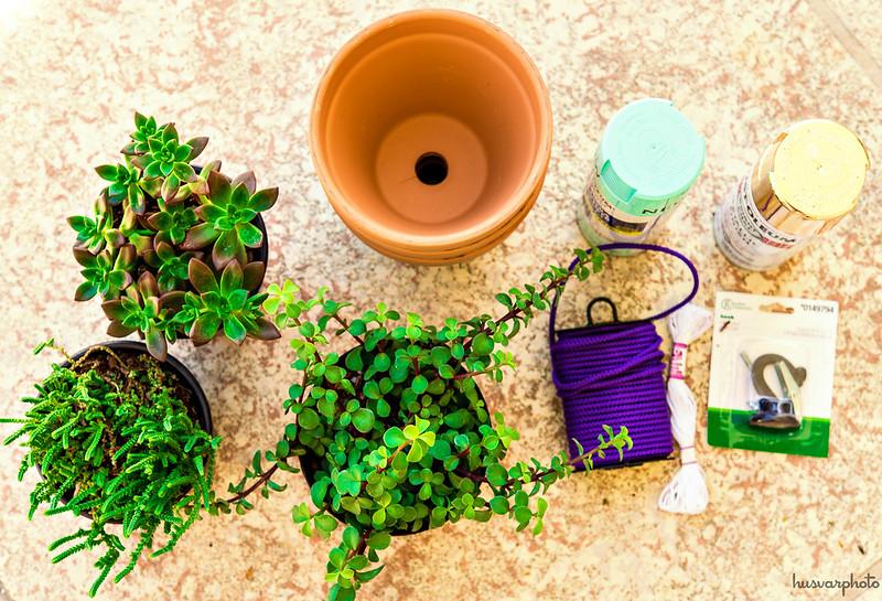 #LongLastingScent DIY hanging succulent pots