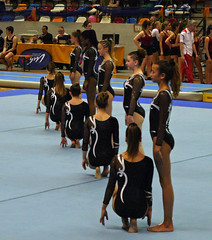 FESTI'gym 2015 Parc des sports de VANDOEUVRE