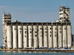 Collingwood Terminals Limited