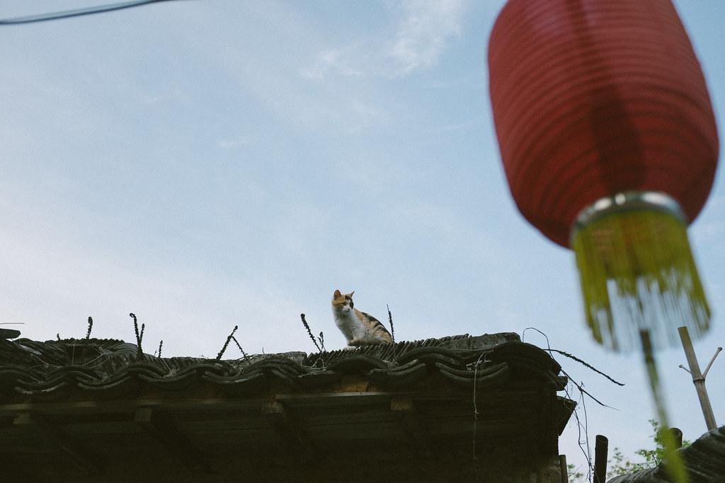 anhui, china-066