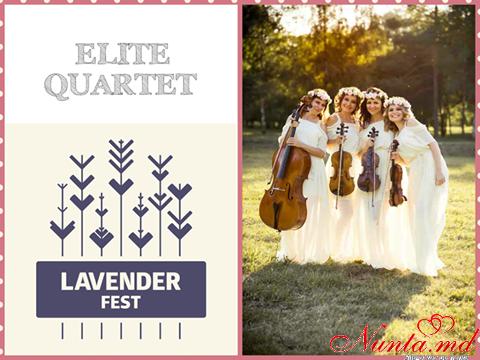 ELITE QUARTET  > Pe 20 iunie Vă așteptăm cu drag la Festivalul Levănțicii !!!