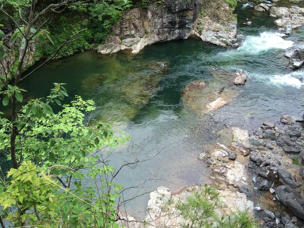 鬼怒川の水