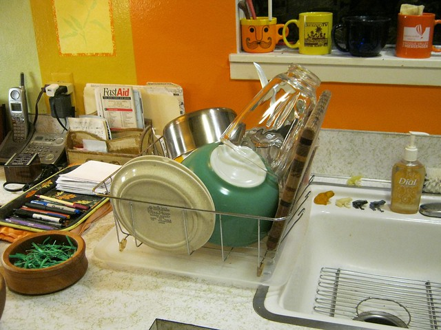 Dishes-1801, Canon POWERSHOT A490