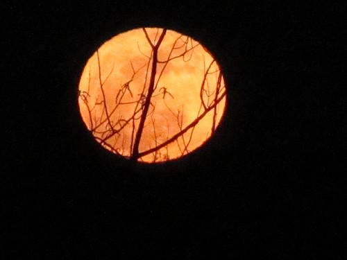 3portag-moon