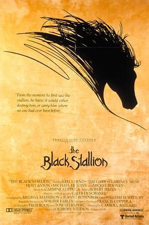 黑神驹 The Black Stallion(1979)