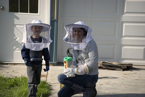 Hive helper