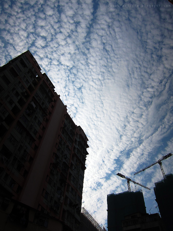 sky in the city
