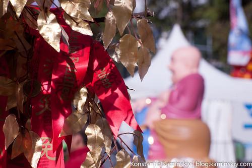 Buddha's Birsday Festival