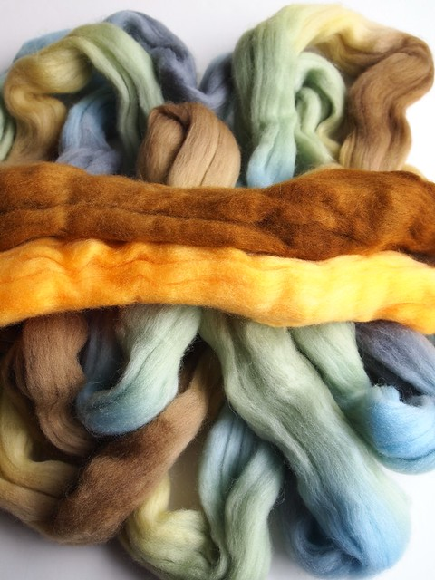 Greenwoodfiberworks-fiber club-May2012-Polwarth-4oz-Downton & SCF semi solids-2
