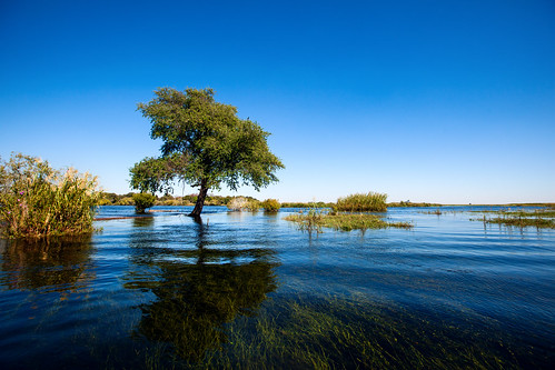 africa river flood botswana submerged namibia villagewalk floodwater choberiver quadripoint namibianvillagewalk